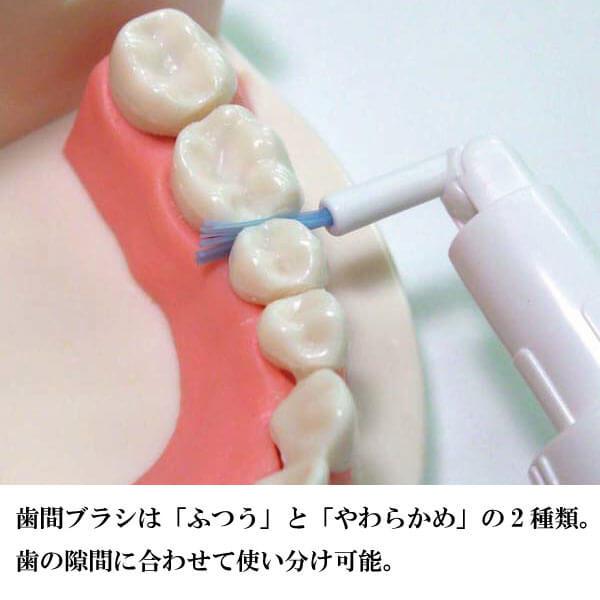 奥歯の歯間にも届く