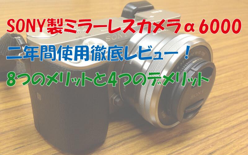 ソニー製ミラーレスカメラα6000二年間使用徹底レビュー!8つのメリットと4つのデメリット