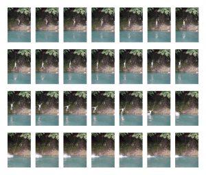 ターザンロープの連続写真
