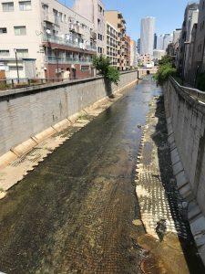 中野区の隅田川